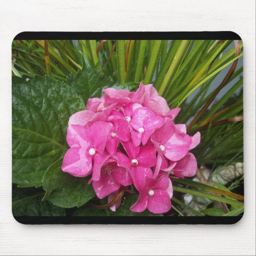 Hydrangeas by the Pond Mouse Pad