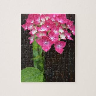hydrangeas in bloom jigsaw puzzle