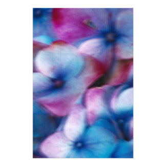 Hydrangeas in the wind photo print