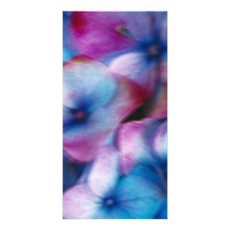 Hydrangeas in the wind photo greeting card