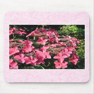 Hydrangeas. Pretty Pink Flowers. Mousepad