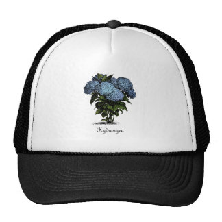 Hydrangeas Vintage Botanical Hats