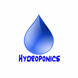 Hydroponics logo water drop and text image standing photo sculpture