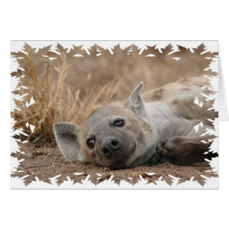 Hyena Picture Greeting Card