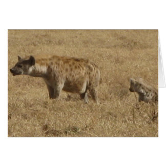 Hyenas Card