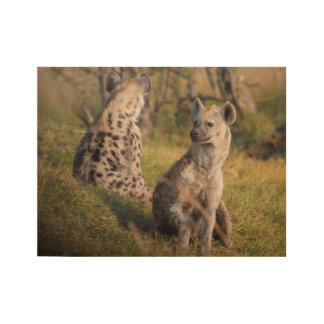Hyenas Wood Poster