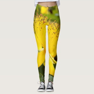 Hypericum Calcyinum Leggings
