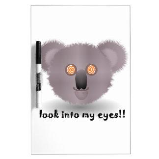 hypnotic koala bear dry erase white board