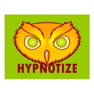 Hypnotize Owl Postcard