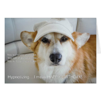 Hypnotizing Corgi birthday card