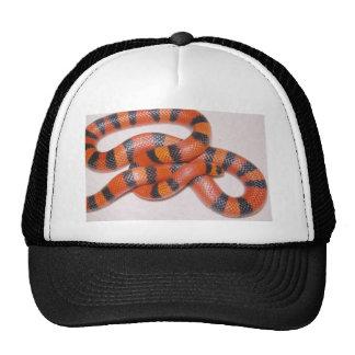 Hypo Honduran Milk Snake Milksnake Trucker Hat