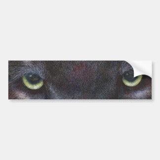 Hyptnotist Eyes Bumper Sticker
