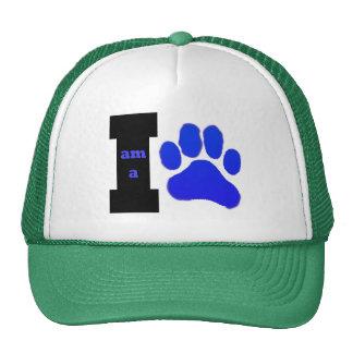 I am a Cub hat