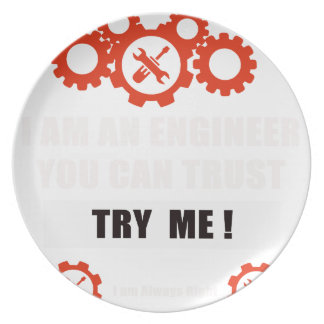 I am an engineer you can trust plate
