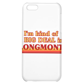 I am kind of a BIG DEAL in Longmont iPhone 5C Covers