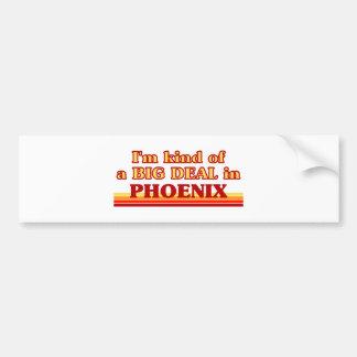I am kind of a BIG DEAL in Phoenix Bumper Sticker