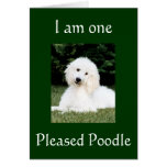"""""""I AM ONE PLEASED POODLE"""" THANK YOU CARDS"""