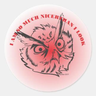 I am so much nicer Owl Classic Round Sticker