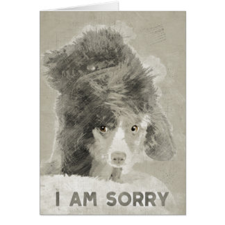 I am sorry. card