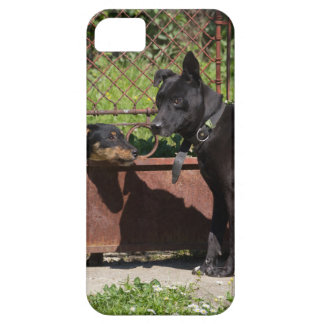 I am the boss iPhone 5 cover