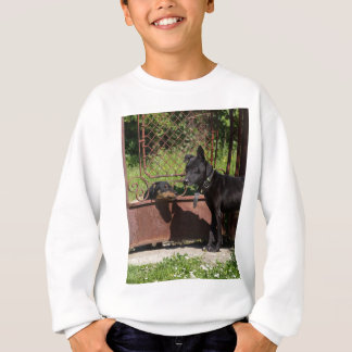I am the boss sweatshirt