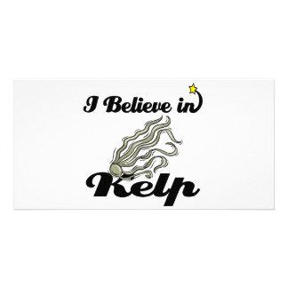i believe in kelp photo cards