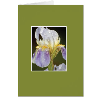 I Blossom with You Card