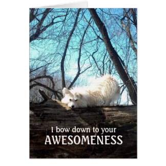 I Bow Down To Your Awesomeness (A Thank You Card) Card
