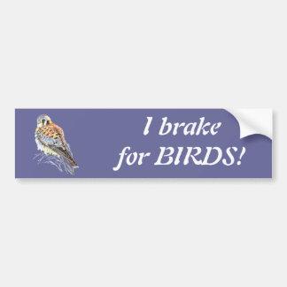 I brake for Birds - Birding Kestrel Watercolor Bumper Sticker