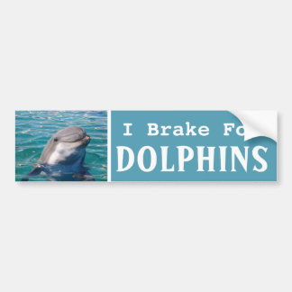 I Brake For DOLPHINS Bumper Sticker