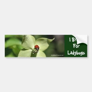 I Brake For Ladybugs Flower Photo Bumper Sticker