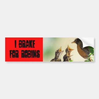 I brake for Robins Bumper Sticker