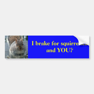 I brake for squirrels...and YOU? Car Bumper Sticker