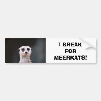 I Break for Meerkats! Bumper Sticker
