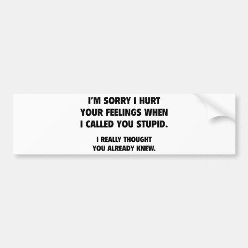 I Called You Stupid Bumper Sticker