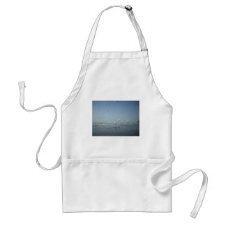 I can flying standard apron