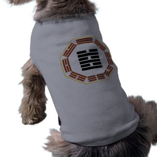 "I Ching Hexagram 63 Chi Chi ""After Completion"" Doggie T Shirt"