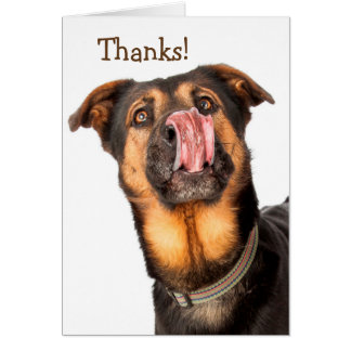 I Could Kiss You Thank You Card