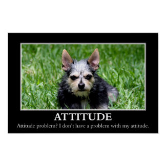 I don t have an attitude problem L Posters
