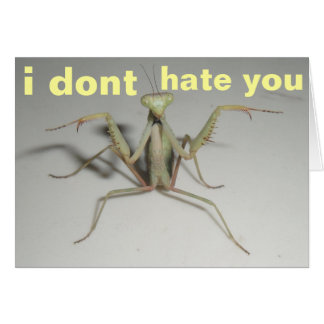 i dont hate you card
