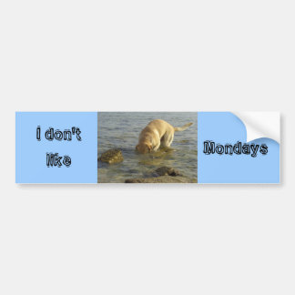 I don't like Mondays Bumper Sticker