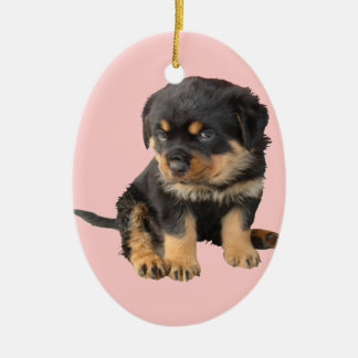 I Don't Need To Be Told I Am Cute Ceramic Ornament