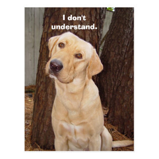 I don't understand. postcard