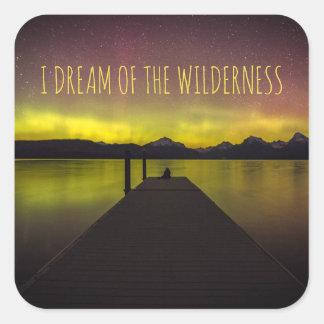 I Dream Of The Wilderness Aurora Borealis Stickers