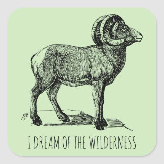 I Dream Of The Wilderness Big Horn Sheep Stickers