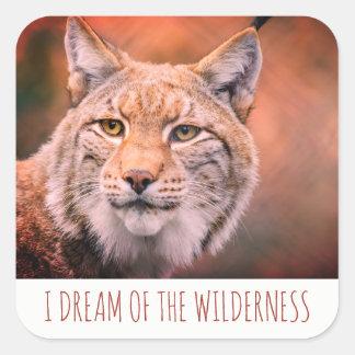 I Dream Of The Wilderness Bobcat Square Sticker