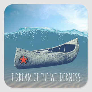I Dream Of The Wilderness Canoe Stickers