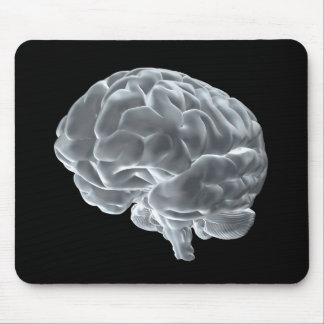 I got brains! mouse pad