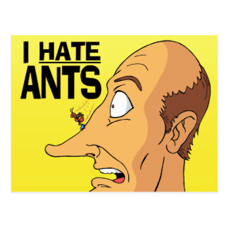 I HATE ANTS POST CARDS