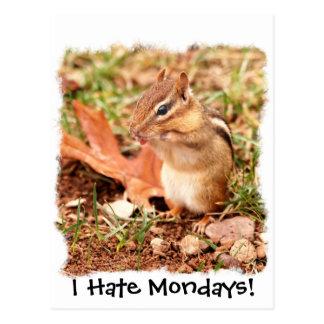 I Hate Mondays! Chipmunk Postcard
